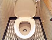 簡易水洗トイレ取替え